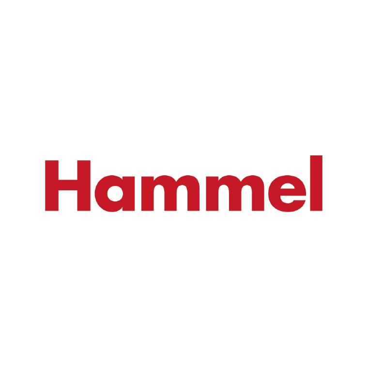 Logo Robinetterie Hammel