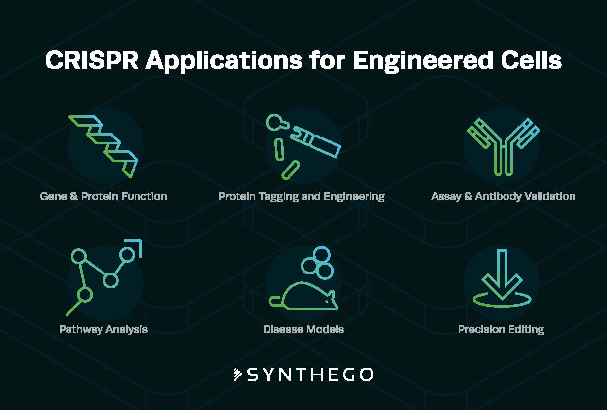 applications ec Synthego Yole
