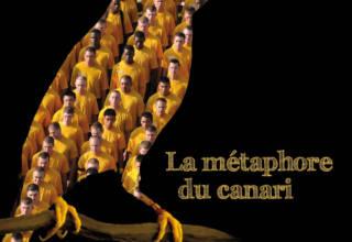 La métaphore du canari