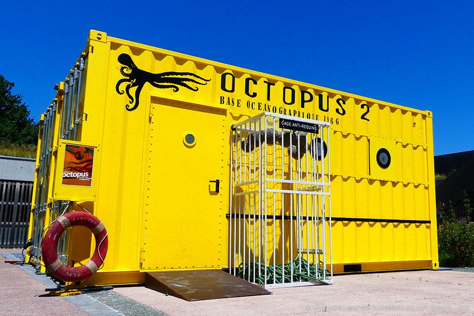 Octopus : ateliers pour enfants au Grand Parc Miribel Jonage
