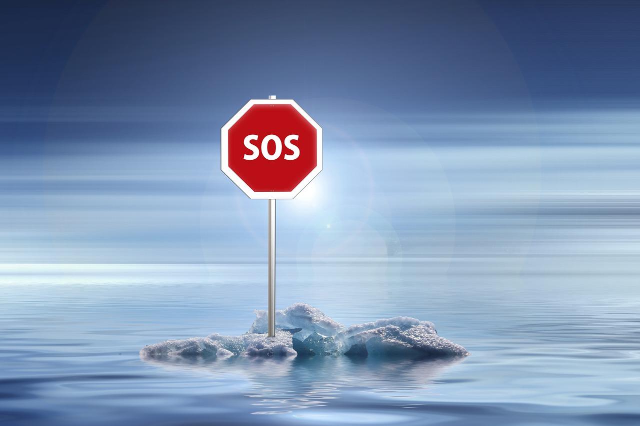 Photo représentant un morceau de baquise en train de fondre et panneau SOS planté dessus