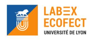 logo LabEx ECOFECT