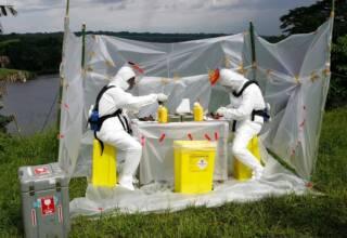 Région de Lambaréné, Gabon:à la recherche du réservoir du virus Ebola, des scientifiques autopsient des chauves-souris et recueillent des échantillons biologiques qui seront analysés au Centre de Recherches Médicales de Franceville. Jean-Jacques Lemasson / IRD, Author provided