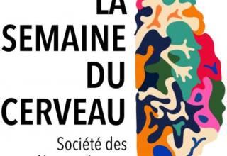 Logo-Semaine-du-cerveau