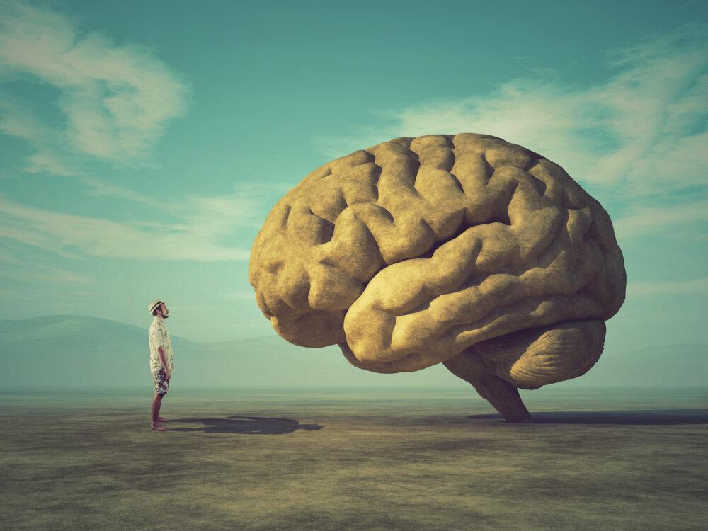 l'homme face à son cerveau