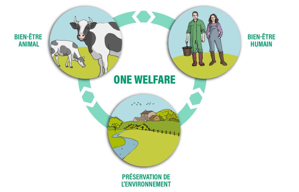 one welfare