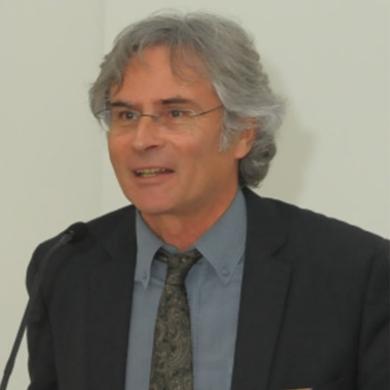 Christophe Gourdon Scientific Committee