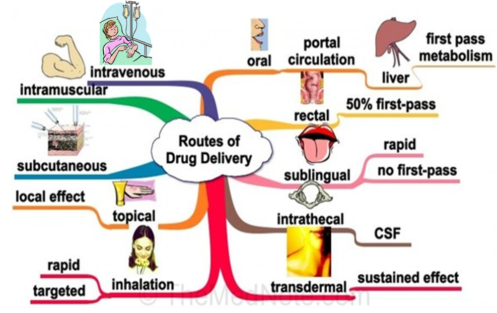 Overview of the drug administration route