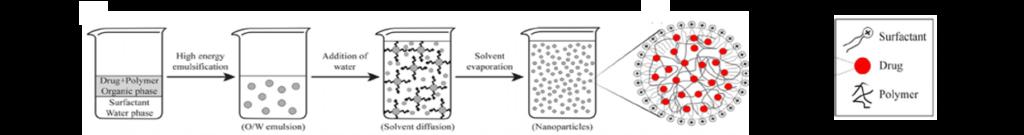 Schematic representation of PLGA nanoparticle preparation