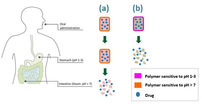 schema polymer