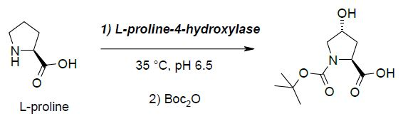 L-proline-4-hydroxylase