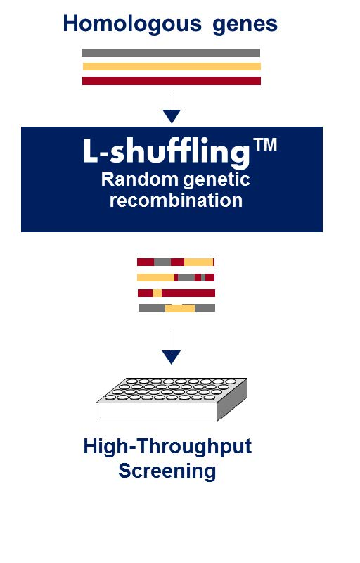 chemicals-L-shuffling-scheme