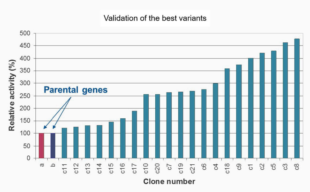 detergency-validation-of-the-best-variant-graph