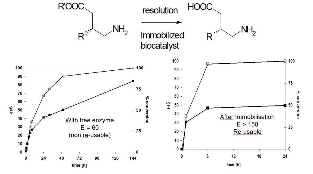 enzyme-formulation