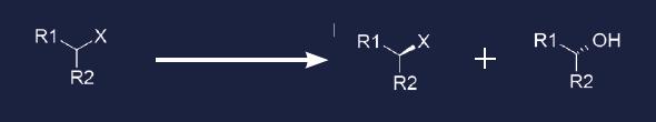 reaction-dehalogenases
