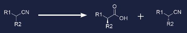 reaction-nitrilases