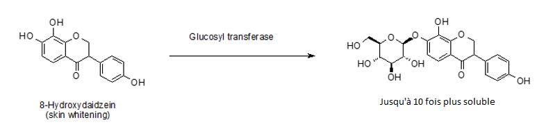 schéma-solubilité-2