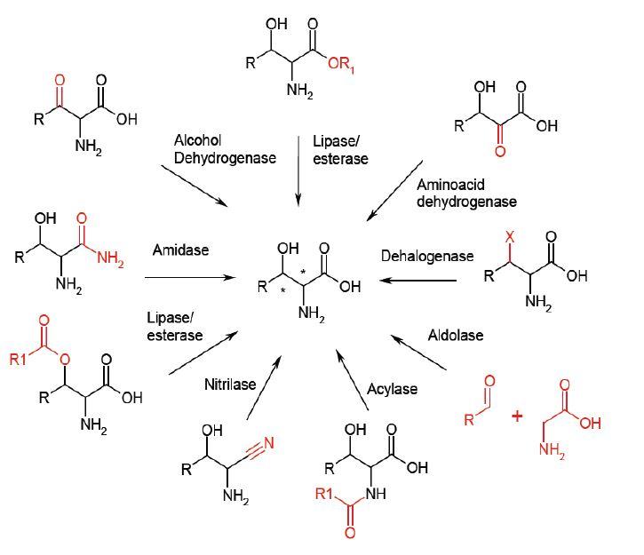synthèse-des-molécules