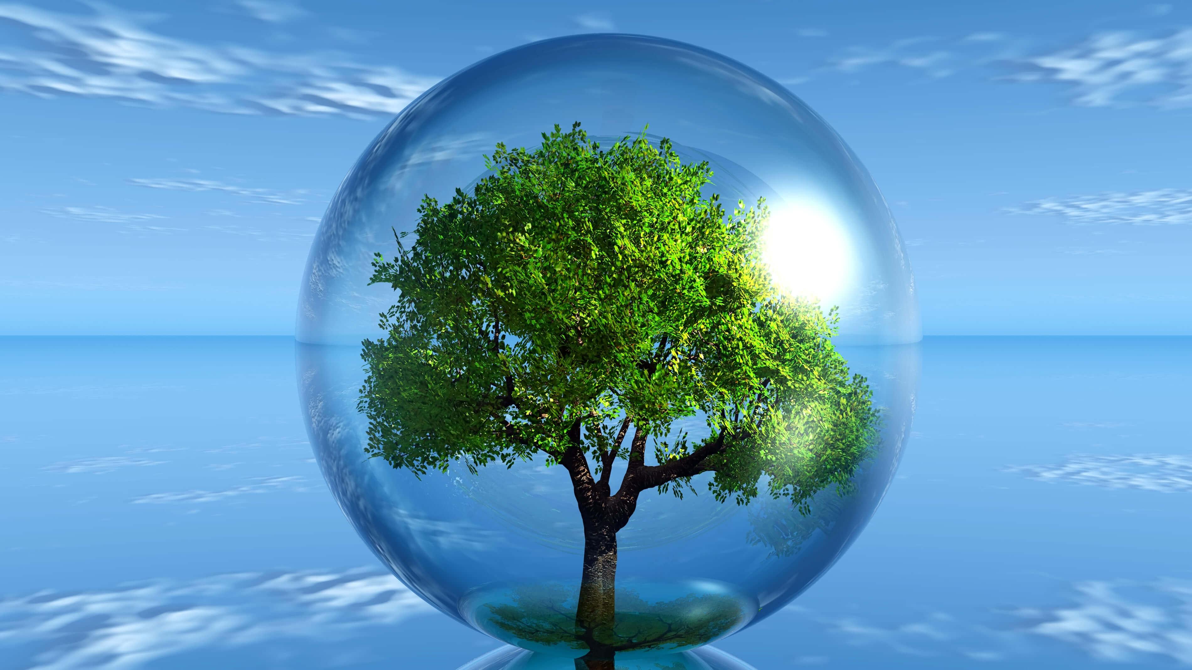 Les développements durables pour prendre soin de notre planète