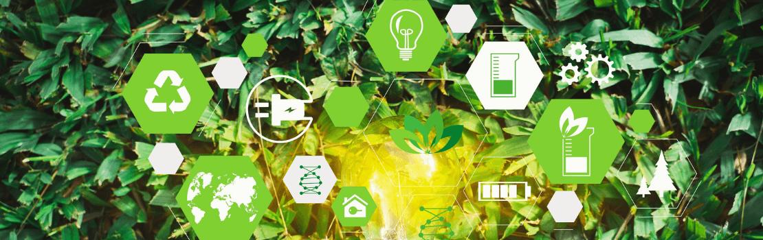 Partenaires d'une croissance durable