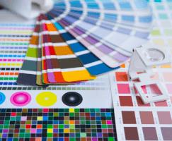 Pantone  Colors for the Studio's graphic preparation and realization of the Designs
