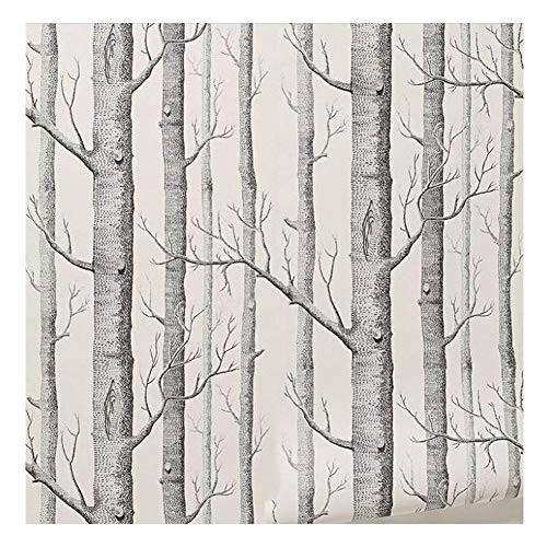 Cutogain bouleaux Papier Peint Moderne Rouleau de Papier Mural de d/écoration Forest Wood Fonds d/écran pour Chambre /à Coucher Salle de s/éjour